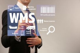 Over dit WMS-dossier