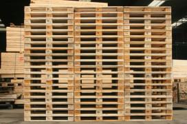 Meerdere overtredingen palletbedrijven in Moerdijk