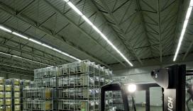 Internet of things moet verlichting distributiecentra slimmer maken
